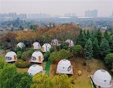 园博园星空帐篷露营